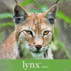 Anchor Paper - Domtar Lynx Digital Copy Paper