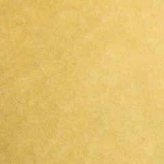 #10 OSDS 60# CHAMPAGNE SKYTONE VELLUM COMMERCIAL ENVELOPE 2500/ctn 500/box BOX